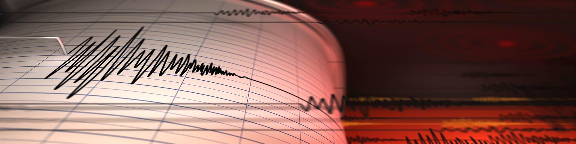 Valorisation des filières du son par l'économie